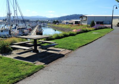 Bellingham Marina, right outside the office!